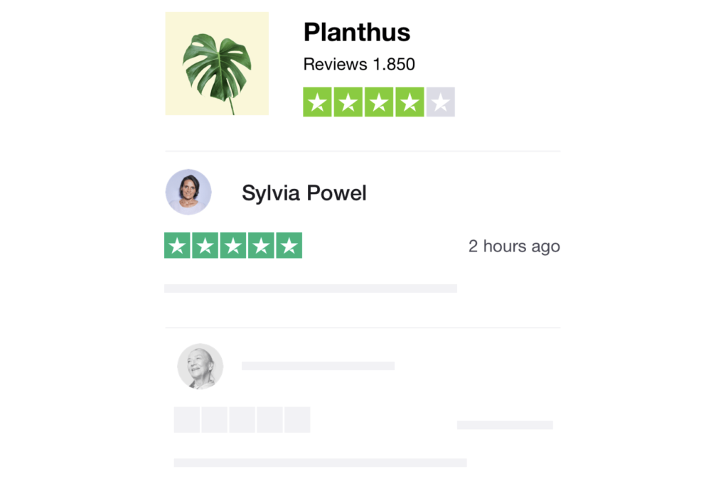 How to Get Reviews with TrustPilot: Service Reviews